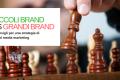 Socialmedia marketing: Piccoli brand vs Grandi brand
